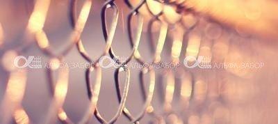 Забор из оцинкованной сетки рабица